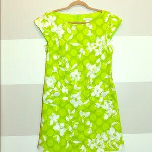 Dress Barn dress is size 8.